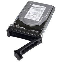 2TB 7.2K RPM NLSAS 12Gbps 512n 3.5in Hot-Plug Hard Drive, CK