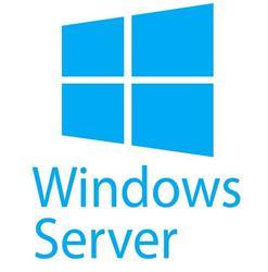 5-pack of Windows Server 2019/2016 User CALs (STD or DC) Cus Kit