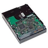 HP 2TB SATA 6,0GB/s 7200 ot./min HDD